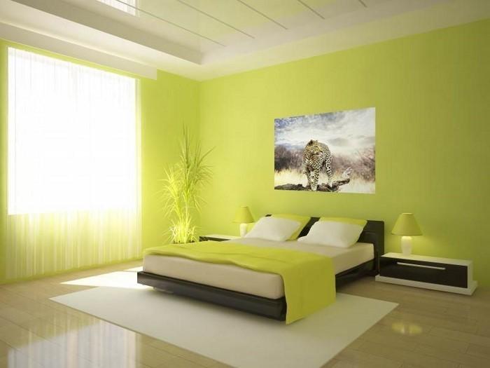 Colori per camera da letto Green-A -Grand-Еinrichtung