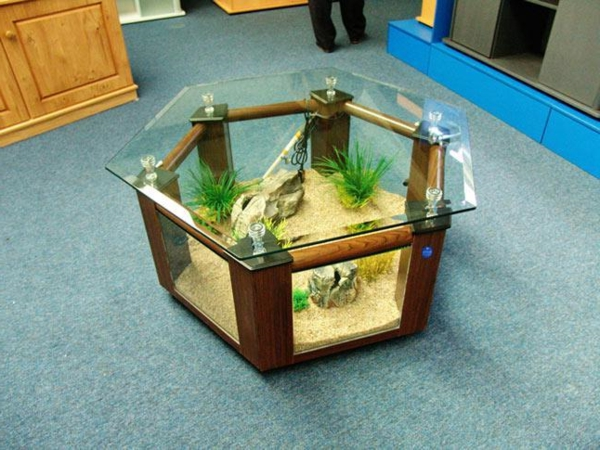 aquarium table autour