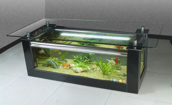 aquarium table carré vert