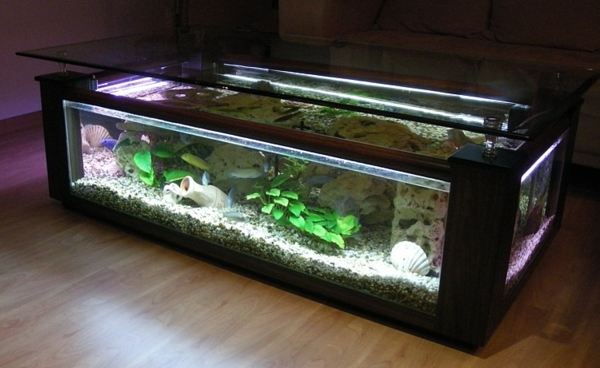 aquarium-table-salle à manger carrée
