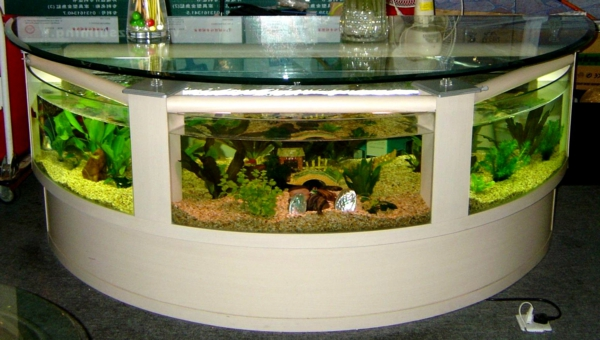 aquarium table-vert vivant