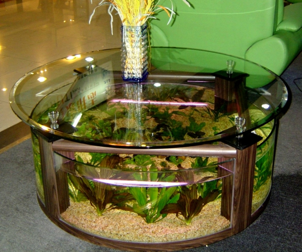Table d'aquarium-salon autour