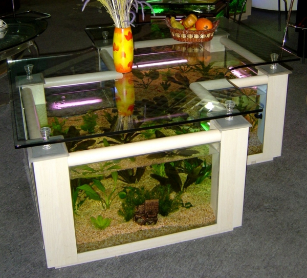 aquarium table-salon-jumeaux
